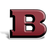 Image result for bayonne high school bees